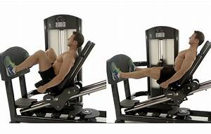 Great 2 Moves: Squats Vs Leg Press – Which Exercise is ...