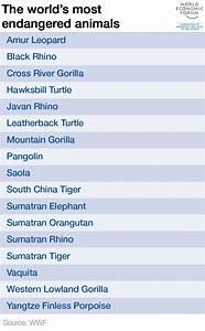 Threatened Species List | www.pixshark.com - Images ...