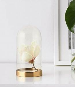 Glasglocke Mit Teller : ikea deutschland mit der beg vning glasglocke inkl teller l sst sich dekoratives wirkungsvoll ~ Orissabook.com Haus und Dekorationen