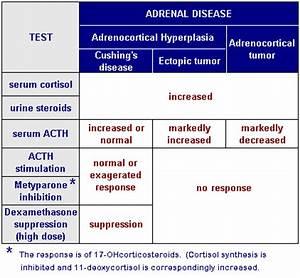 Understanding Dexamethasone Suppression Test | Epomedicine