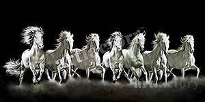 7 Horses Picture | www.pixshark.com - Images Galleries ...