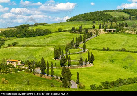 camino toscano camino de toscana con cipreses val d orcia italia