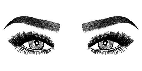 Eyebrow logo png free eyebrow logo png transparent images 104248 pngio. 250 Eyelash vector images at Vectorified.com