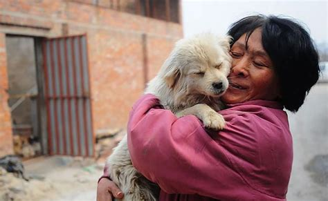 yulin dog festival    chinese