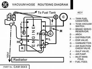 1977 To 1980 Vacuum Hose Routeing Diagram   Mgb  U0026 Gt Forum