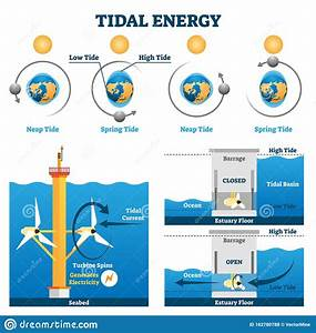 Tidal Energy Vector Illustration  Labeled Water Flow Electricity Production Stock Vector