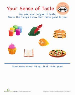 smell activities for preschool sense of taste worksheet education 569