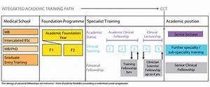 Academic Training Pathway