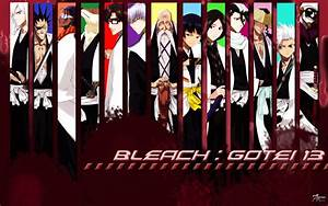 Bleach Wallpaper Captain Backgrounds #5733 Wallpaper ...