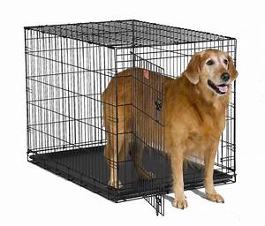 Best dog crates everything you need to know dogable for Best dog crates for puppies