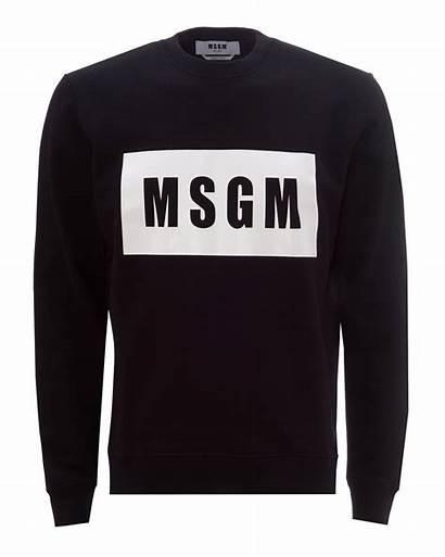 Jumper Msgm Mens Crewneck Sweatshirt