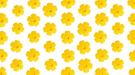 Yellow Picture by Why You Should Add More Yellow To Your Cnn