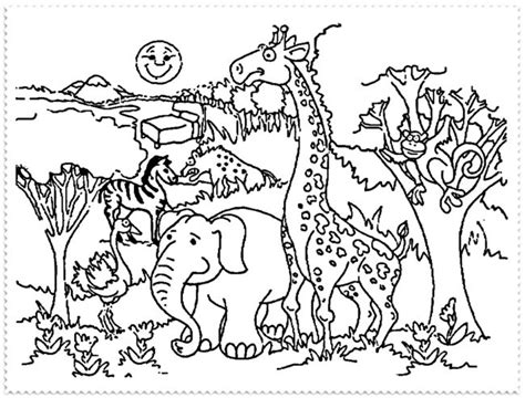 zoo coloring  zoo coloring