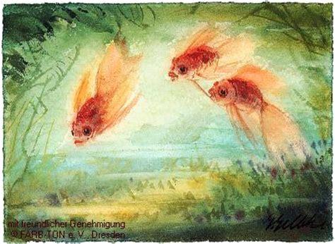 goldfische carassius auratus auratus schleierschw 228 nze shubunkin