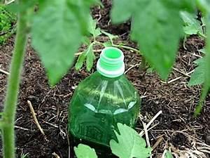 Arrosage Des Tomates : comment fabriquer un arrosage automatique pour tomates ~ Carolinahurricanesstore.com Idées de Décoration