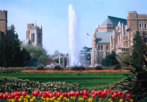 University Of Washington, Seattle, Wash  In Photos. Bankruptcy Attorney North Carolina. Internet Backup Solutions Plumbers Houston Tx. Cleaning Services Phoenix Home Warranty 2 10. Trade Show Booth Panels Real Estate Paralegal. Extractable And Leachable Dallas Cash Advance. All In One Home Inspection Nausea In Children. Best Medicare Part B Plans Clear Capital Bpo. Free Online Bible Institute Ford Escape Club