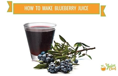 what can you make with blueberries how to make blueberry juice the juice chief