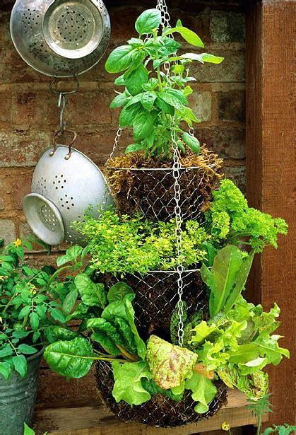 Hanging Vegetable Garden by 9 Vegetable Gardens Using Vertical Gardening Ideas