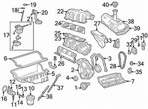 2004 Mazda Engine Balance Shaft Chain Guide  4 0 Liter