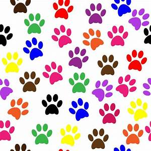 Paw Prints Colorful Wallpaper Free Stock Photo - Public ...