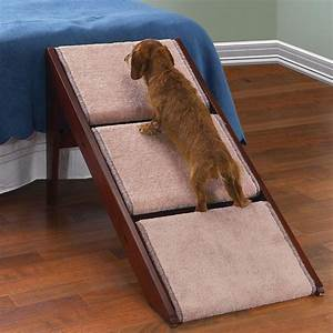 knowing before build dog stairs for high bed With build dog stairs