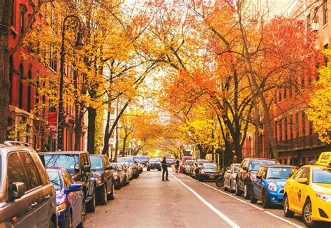 Fall Backgrounds New York by Ny Through The Lens New York City Photography Autumn