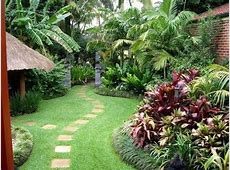 tropical backyards well maintained tropical backyard