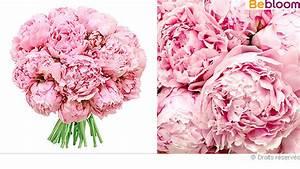 Langage Des Fleurs Pivoine : des pivoines pour la f te des m res ~ Melissatoandfro.com Idées de Décoration