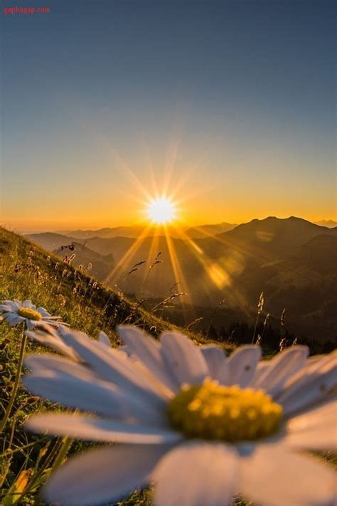 beautiful picture sunset earth sunset beautiful pictures sunrise