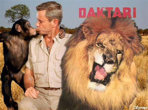 .Daktari with Clarence the cross-eyed lion and Judy the chimp. Used to love this show ...