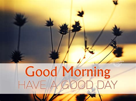 Good Morning Have A Good Day Desicommentscom