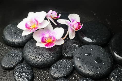 fototapete feng shui orchidee zen jetzt bestellen