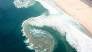 The Dangers Of Rip Currents Video