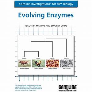 Carolina Investigations U00ae For Ap U00ae Biology  Evolving Enzymes