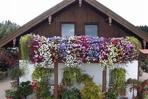 balkon bepflanzung perfect den balkon nach innen With französischer balkon mit kleiner sonnenschirm zum mitnehmen
