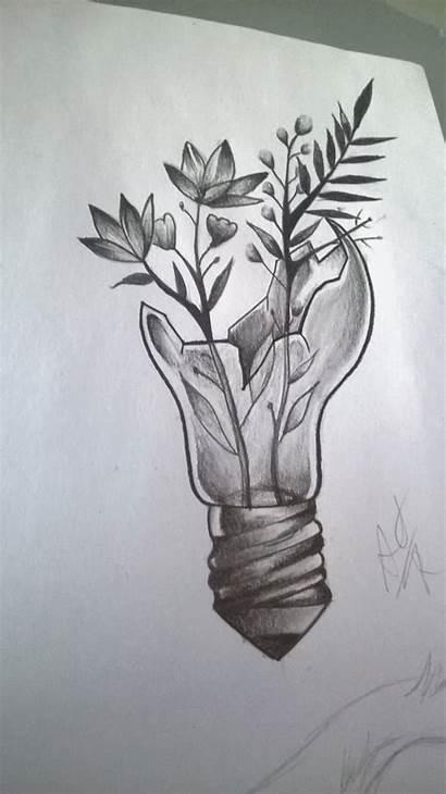Drawings Plantas Pencil Easy Drawing Dibujos Flower
