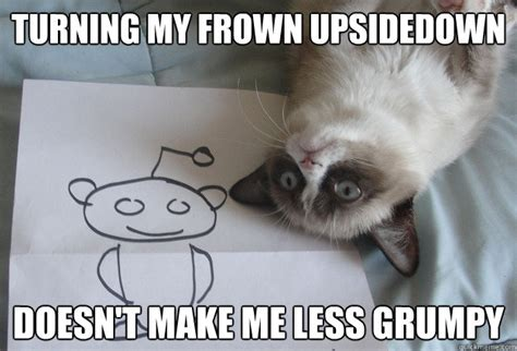 Frowning Meme - turning my frown upsidedown doesn t make me less grumpy sudden clarity grumpy cat quickmeme