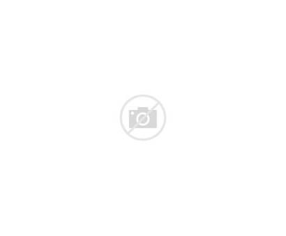 Bulldog Outline French Behance Drawing Cartoon