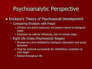 Sexual Development Stages Ppt Theories Of Human Development Powerpoint