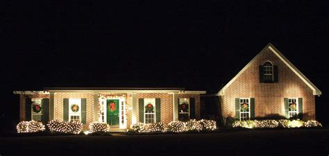 net christmas lights for bushes bright lights archives