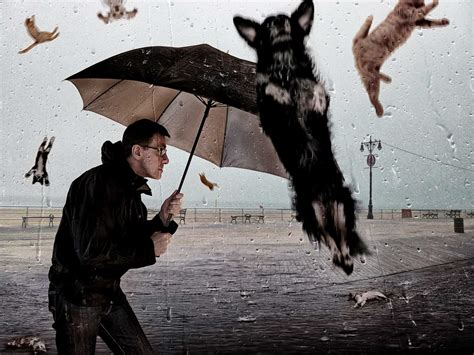 Strange British Idioms; Where They Come From And How To