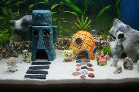 spongebob decor idea for my fish tank 10 gallon