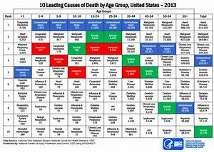 Deaths By Age Group