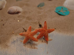 Baby Sugar Sea Star Earrings  Sea Inspired Jewelry   Sugar