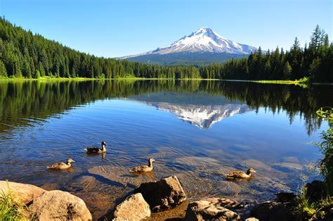 beautiful places  visit  oregon page