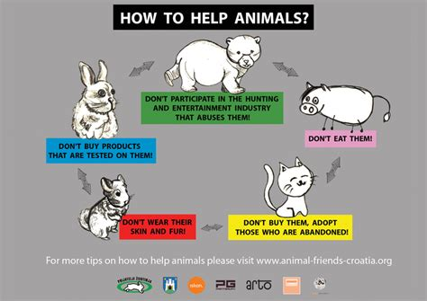 how do animals help afc 10 19 12 how to help animals