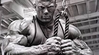Bodybuilding Backgrounds Desktop Pixelstalk