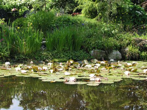 Garten Verschönern Ohne Geld by Garten Mit Wenig Geld G 252 Nstig Anlegen Mein Sch 246 Ner Garten