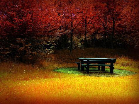 beautiful landscapes beautiful landscapes gangster girl wallpaper 30638712 fanpop page 10