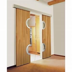 Porte Intérieur Double Vantaux : porte interieur coulissante 2 vantaux le bois chez vous ~ Melissatoandfro.com Idées de Décoration